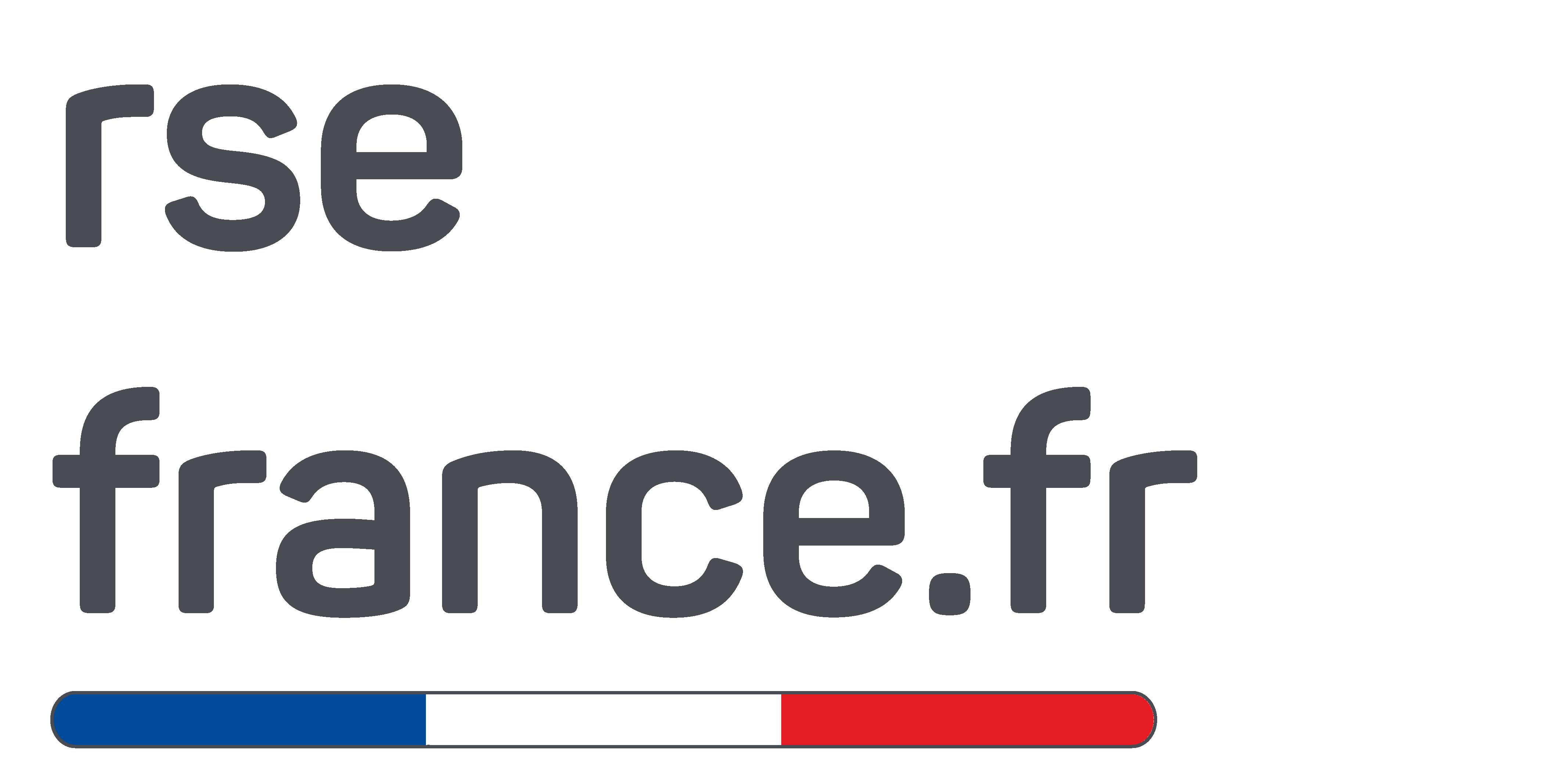 Logo Gris RSE FRANCE ETHAP Handicap Inclusion